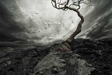 The Ashen Tree - The Ashen Tree