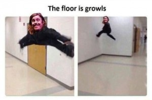 the floor is growls